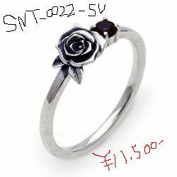 SNT-022-SV